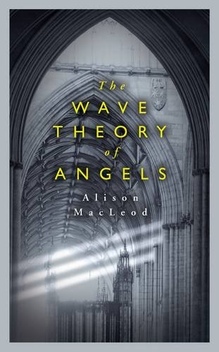 9780241142615: The Wave Theory of Angels