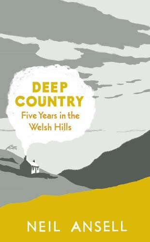 9780241145005: Deep Country: Five Years in the Welsh Hills