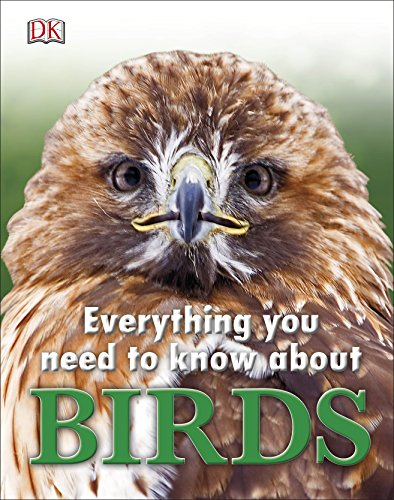 9780241227916: Everything You Need to Know about Birds