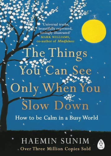 9780241340660: The Things You Can See Only When You Slow Down: How to be Calm in a Busy World