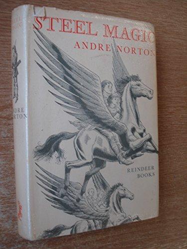 9780241911938: Steel Magic (Reindeer Books)