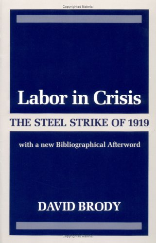 9780252013737: Labor in Crisis: The Steel Strike of 1919 (Critical Periods of History.)