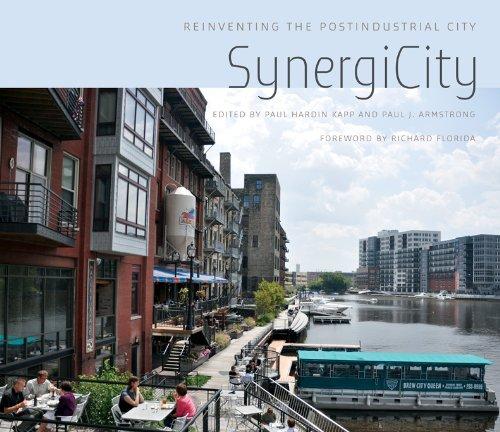 9780252036811: SynergiCity: Reinventing the Postindustrial City