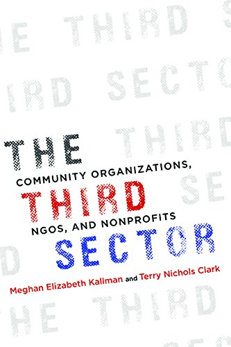 9780252040436: The Third Sector: Community Organizations, NGOs, and Nonprofits
