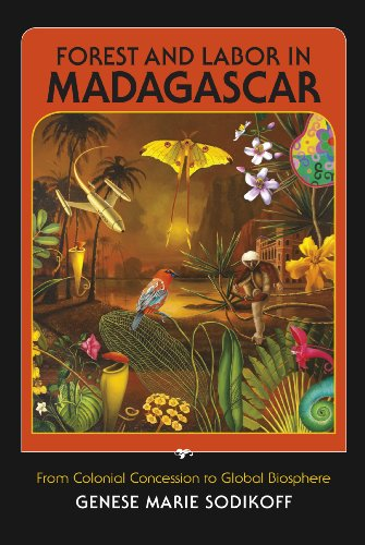 9780253003096: Forest and Labor in Madagascar: From Colonial Concession to Global Biosphere