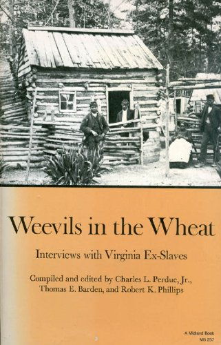 9780253202376: Weevils in the wheat: Interviews with Virginia ex-slaves (Midland Books: No. 237)