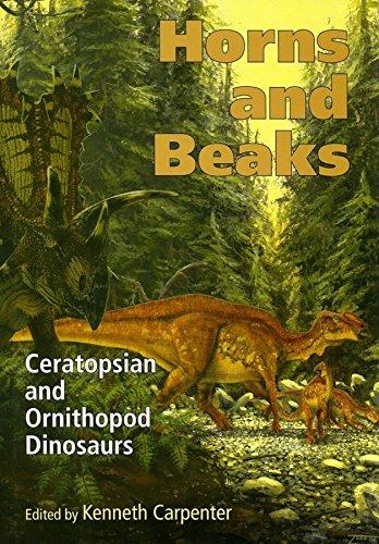Horns and Beaks: Ceratopsian and Ornithopod Dinosaurs