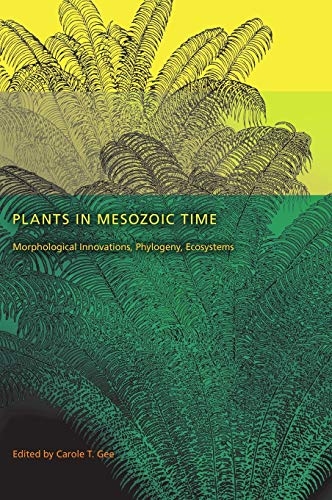 9780253354563: Plants in Mesozoic Time: Morphological Innovations, Phylogeny, Ecosystems (Life of the Past)