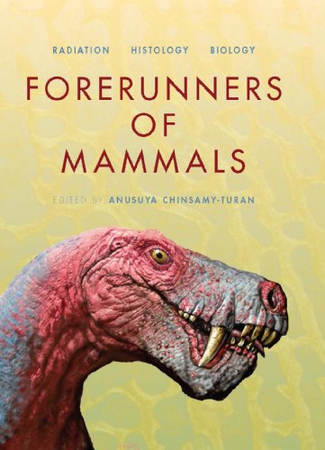 Forerunners of Mammals: Radiation Histology Biology (Hardcover): Anusuya Chinsamy-Turan