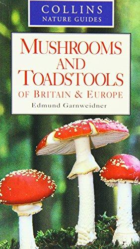 9780261674066: COLLINS MUSHROOM & TOADSTOOLS BOOK EDMUND GARNWEIDNER