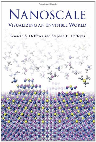 9780262012836: Nanoscale: Visualizing an Invisible World (MIT Press)