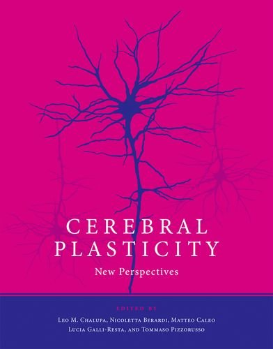 9780262015233: Cerebral Plasticity: New Perspectives (MIT Press)
