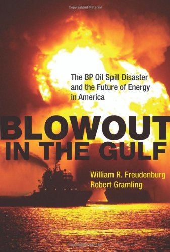9780262015837: Blowout in the Gulf: The BP Oil Spill Disaster and the Future of Energy in America (The MIT Press)
