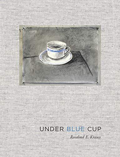 9780262016131: Under Blue Cup (MIT Press)