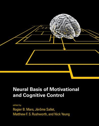 Neural Basis of Motivational and Cognitive Control (Hardcover): Rogier B. Mars