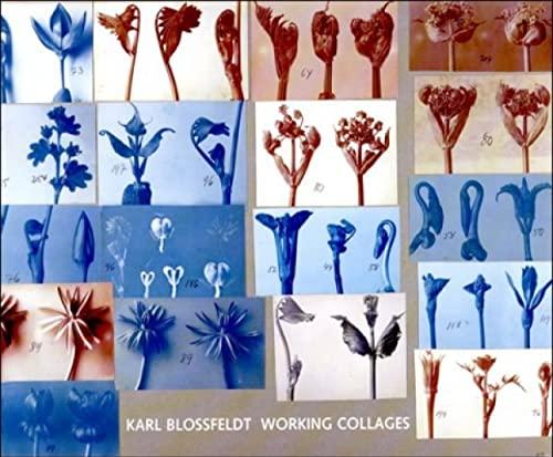 9780262025010: Karl Blossfeldt: Working Collages