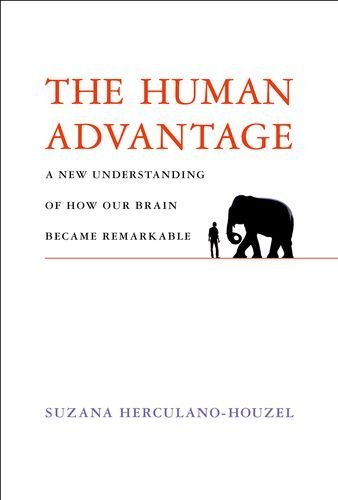 9780262034258: The Human Advantage: A New Understanding of How Our Brain Became Remarkable (MIT Press)
