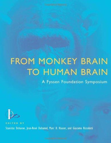 9780262042239: From Monkey Brain to Human Brain: A Fyssen Foundation Symposium: A Symposium of the Fyssen Foundation