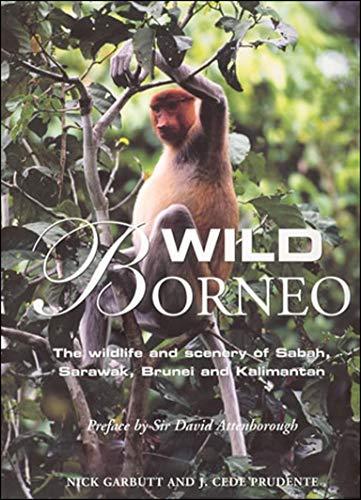 9780262072748: Wild Borneo: The Wildlife and Scenery of Sabah, Sarawak, Brunei, and Kalimantan (MIT Press)