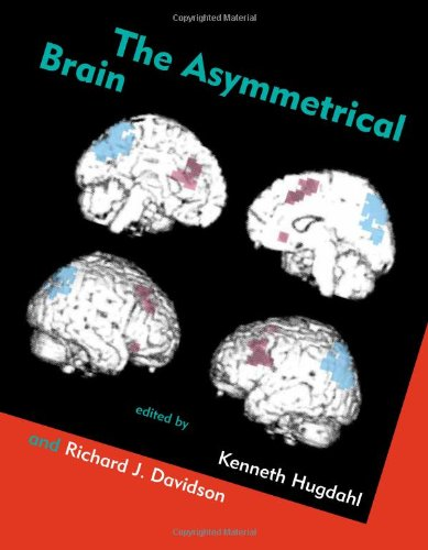 9780262083096: The Asymmetrical Brain (Bradford Books)