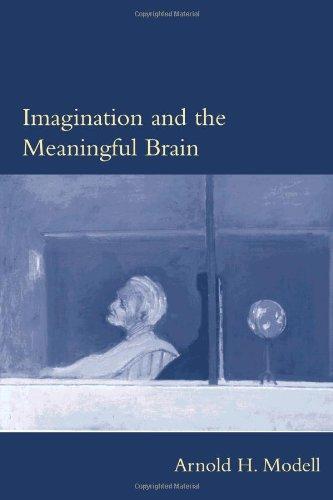 9780262134255: Imagination and the Meaningful Brain (Philosophical Psychopathology)