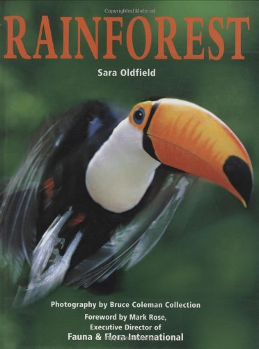 9780262151061: Rainforest (MIT Press)