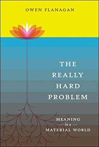 9780262512480: The Really Hard Problem: Meaning in a Material World (A Bradford Book)