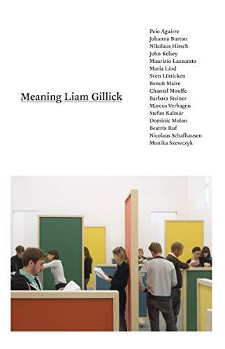 Meaning Liam Gillick: Monika Szewczyk, Stefan