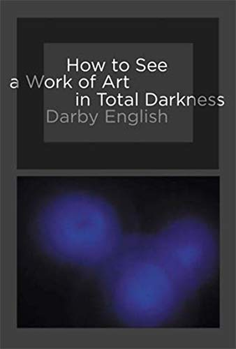 9780262514934: How to See a Work of Art in Total Darkness