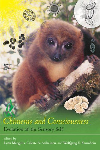 9780262515832: Chimeras and Consciousness