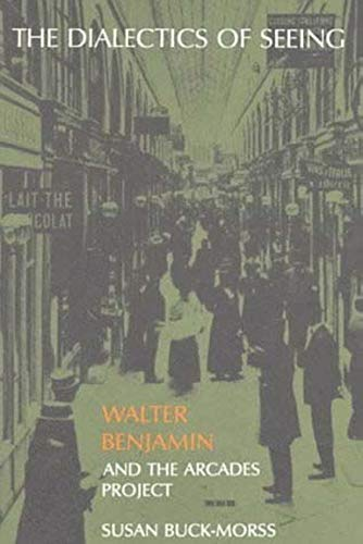 9780262521642: The Dialectics of Seeing: The Philosophy of Color: Walter Benjamin and the Arcades Project (Studies in Contemporary German Social Thought)