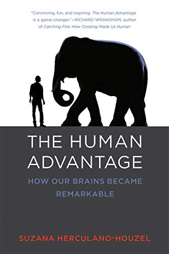 9780262533539: The Human Advantage: How Our Brains Became Remarkable (MIT Press)
