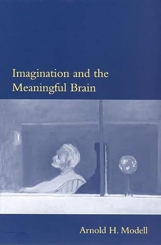 9780262633437: Imagination and the Meaningful Brain (Philosophical Psychopathology)