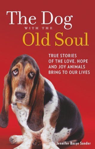 9780263905342: The Dog with the Old Soul