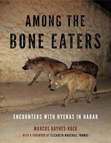 Among the Bone Eaters: Encounters with Hyenas in Harar (Hardcover): Marcus Baynes-Rock