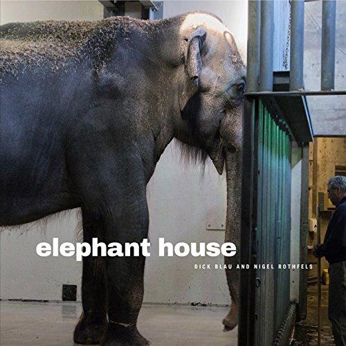 9780271070858: Elephant House (Animalibus)