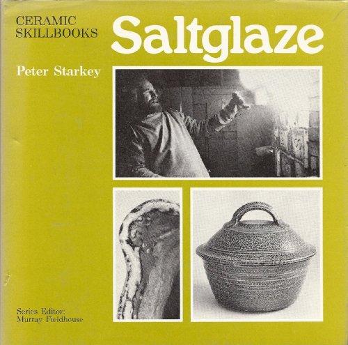 9780273010814: Salt-glaze (Ceramic skillbooks)