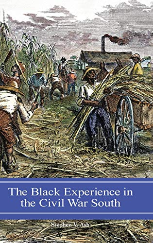 The Black Experience in the Civil War: Stephen V. Ash