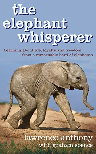 9780283070877: The Elephant Whisperer