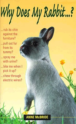 Why Does My Rabbit ?: McBride, Anne