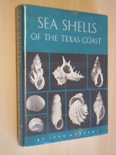 Sea Shells of the Texas Coast: Andrews, Jean