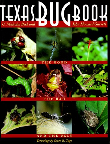 9780292708693: Texas Bug Book: The Good, the Bad, and the Ugly