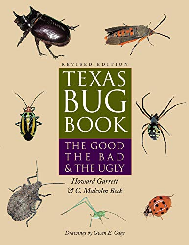 9780292709379: Texas Bug Book: The Good, the Bad, and the Ugly