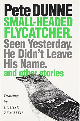 9780292715998: Small-Headed Flycatcher: Seen Yesterday- He Didn't Leave His Name- and Other Stories