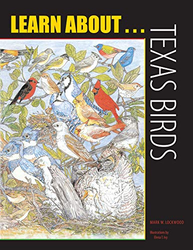 9780292716858: Learn About . . . Texas Birds