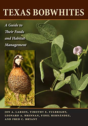 9780292722781: Texas Bobwhites: A Guide to Their Foods and Habitat Management (Ellen & Edward Randall Series)