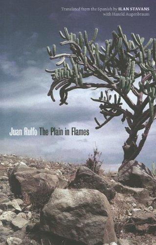 9780292725836: The Plain in Flames (Joe R. and Teresa Loranzo Long Series in Latin Americn and Latino Art and Culture)