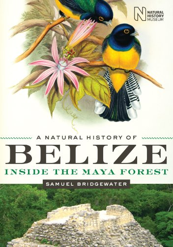 9780292726710: A Natural History of Belize: Inside the Maya Forest (Corrie Herring Hooks Series)