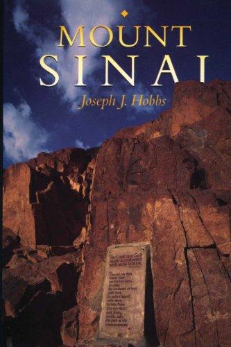 9780292730946: Mount Sinai