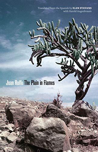 9780292743854: The Plain in Flames (Joe R. and Teresa Lozano Long Series in Latin American and Latino Art and Culture)